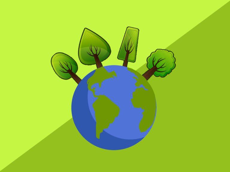 Ecosia e Treedom: la sensibilità ambientale nel mondo tech